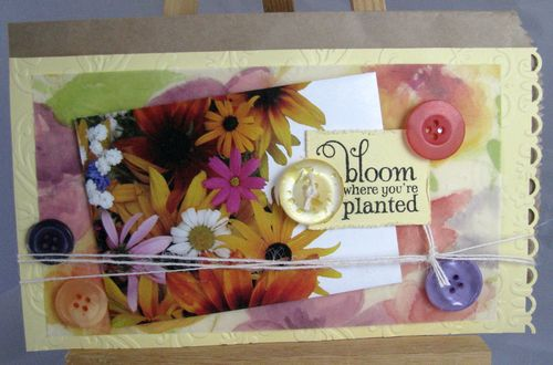 Bloomyellow2